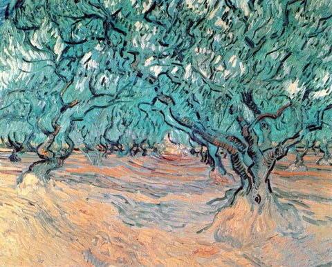 Vincent Van Gogh Olive Trees - Hand Painted Oil Painting