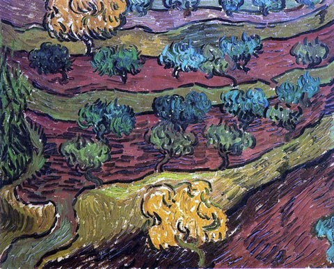 Vincent Van Gogh Olive Trees Against a Slope of a Hill - Hand Painted Oil Painting