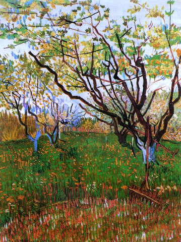 Vincent Van Gogh Orchard in Bloom - Hand Painted Oil Painting
