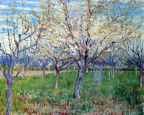 Vincent Van Gogh Orchard with Blossoming Apricot Trees - Hand Painted Oil Painting