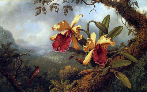 Martin Johnson Heade Orchids and Hummingbird - Hand Painted Oil Painting