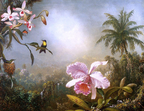 Martin Johnson Heade Orchids, Nesting Hummingbirds and a Butterfly - Hand Painted Oil Painting