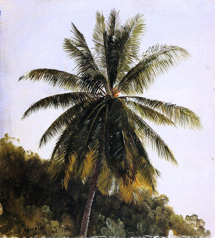 Frederic Edwin Church Palm Trees, West Indies - Hand Painted Oil Painting