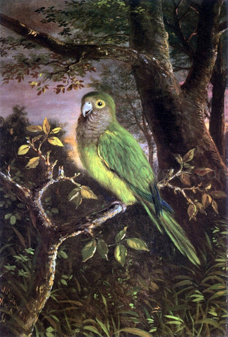 John OBrien Inman A Parrot on a Branch - Hand Painted Oil Painting
