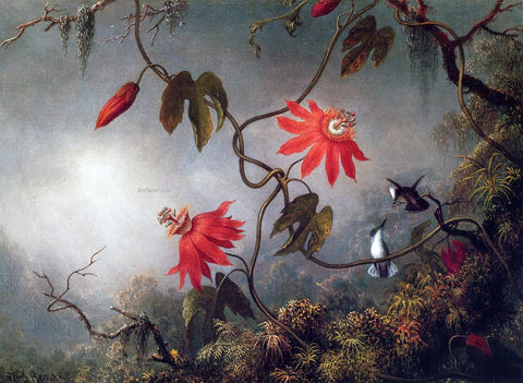 Martin Johnson Heade Passion Flowers and Hummingbirds - Hand Painted Oil Painting