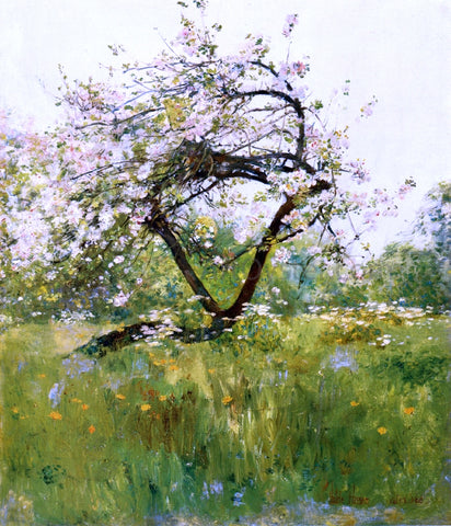 Frederick Childe Hassam Peach Blossoms - Villiers-le-Bel - Hand Painted Oil Painting