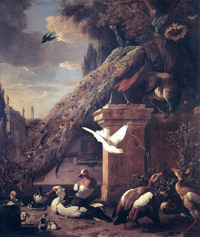 Melchior D'Hondecoeter Peacocks and Ducks - Hand Painted Oil Painting