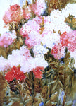 Annie G. Sykes Phlox - Hand Painted Oil Painting