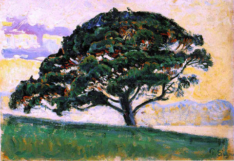 Paul Signac Pine St. Tropez - Hand Painted Oil Painting