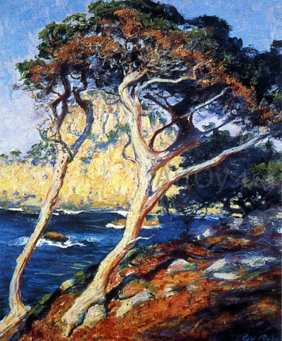 Guy Orlando Rose Point Lobos Trees - Hand Painted Oil Painting