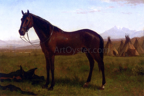 Albert Bierstadt Portrait of a Horse - Hand Painted Oil Painting