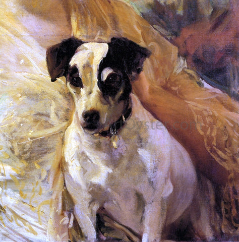 Joaquin Sorolla Y Bastida Portrait of a Jack Russell - Hand Painted Oil Painting