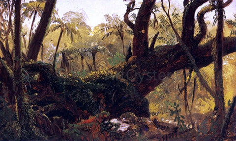 Frederic Edwin Church Rain Forest, Jamaica, West Indies - Hand Painted Oil Painting