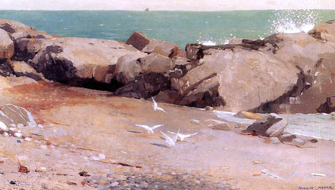 Winslow Homer Rocky Coast and Gulls - Hand Painted Oil Painting