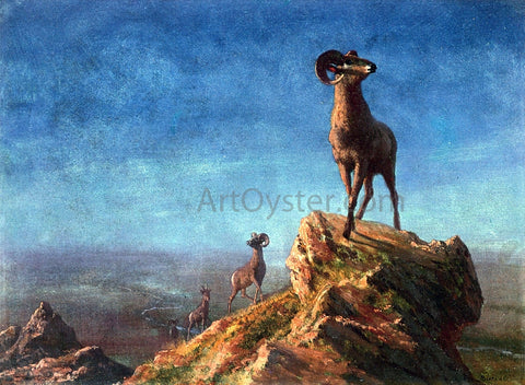 Albert Bierstadt Rocky Mountain Big Horns - Hand Painted Oil Painting