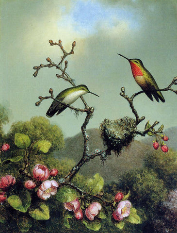 Martin Johnson Heade Ruby Throat of North America - Hand Painted Oil Painting