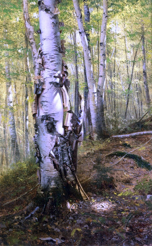 John George Brown Silver Birches - Hand Painted Oil Painting