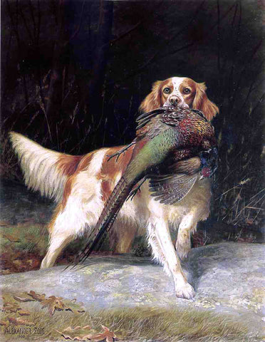 Alexander Pope Springer Spaniel with Pheasant - Hand Painted Oil Painting