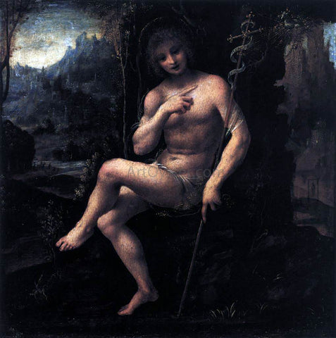 Bernardino Lanino St John the Baptist in the Wilderness - Hand Painted Oil Painting