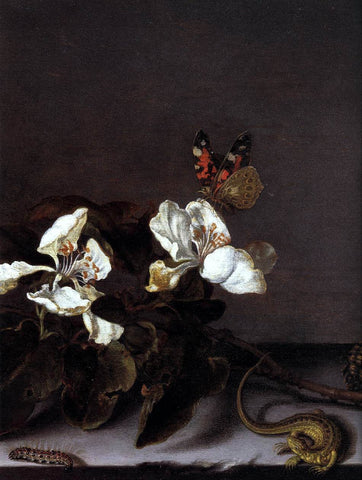 Balthasar Van der Ast Still-Life with Apple Blossoms (detail) - Hand Painted Oil Painting