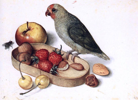 Georg Flegel Still-Life with Pygmy Parrot - Hand Painted Oil Painting