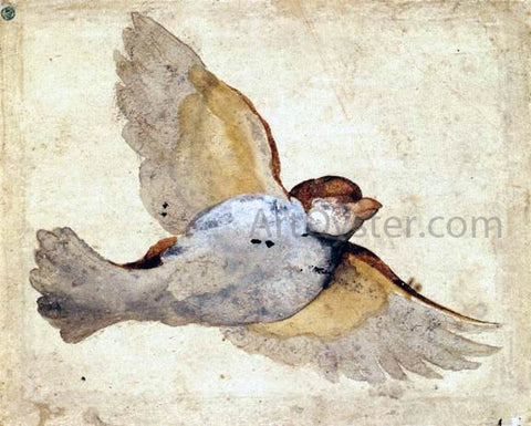 Giovanni Da Udine Study of a Flying Sparrow - Hand Painted Oil Painting