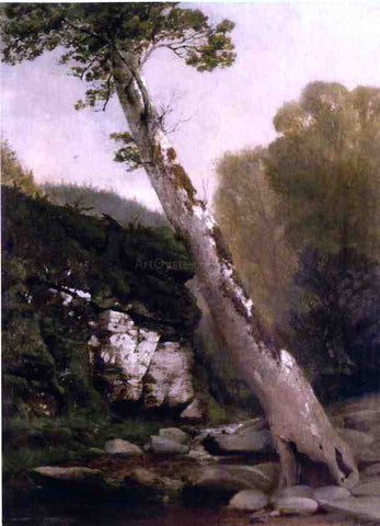 John Williamson Sycamore, Catskill Clove, Below Haines Falls - Hand Painted Oil Painting