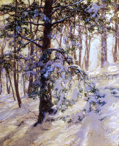Walter Launt Palmer The Bent Branch - Hand Painted Oil Painting