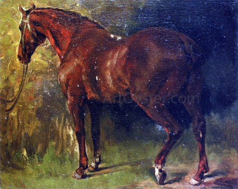 Gustave Courbet The English Horse of M. Duval - Hand Painted Oil Painting