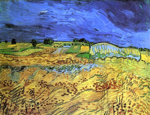 Vincent Van Gogh The Fields - Hand Painted Oil Painting