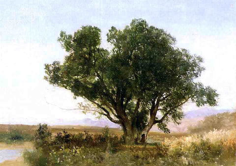 John Frederick Kensett The Front Range, Colorado - Hand Painted Oil Painting