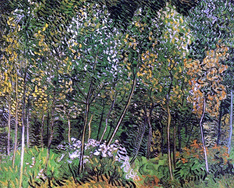 Vincent Van Gogh The Grove - Hand Painted Oil Painting