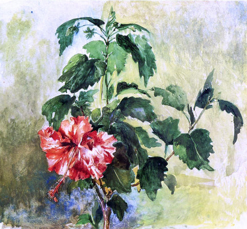 John La Farge The Hibiscus, Tahiti, Society Islands, 1891 - Hand Painted Oil Painting