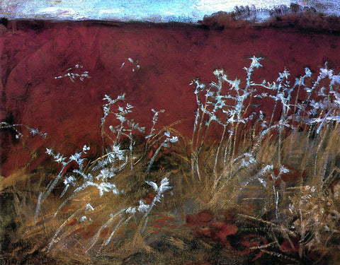 John Singer Sargent Thistles - Hand Painted Oil Painting