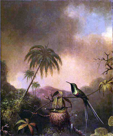 Martin Johnson Heade Thorn-Tail, Brazil - Hand Painted Oil Painting