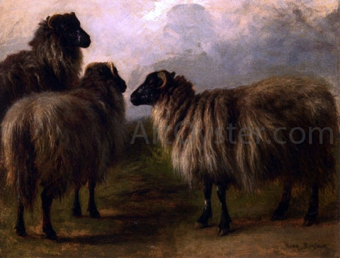 Rosa Bonheur Three Wooly Sheep - Hand Painted Oil Painting