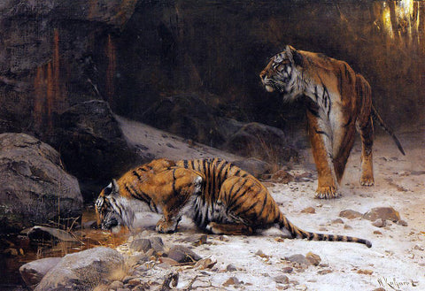 Wilhelm Kuhnert Tigers at a Drinking Pool - Hand Painted Oil Painting