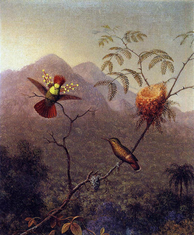 Martin Johnson Heade Tufted Coquette - Hand Painted Oil Painting