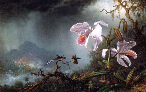 Martin Johnson Heade Two Fighting Hummingbirds with Two Orchids - Hand Painted Oil Painting