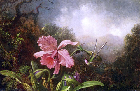 Martin Johnson Heade Two Hummingbirds by an Orchid - Hand Painted Oil Painting