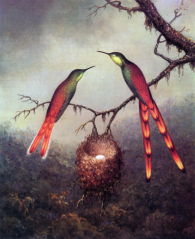 Martin Johnson Heade Two Hummingbirds Garding an Egg - Hand Painted Oil Painting