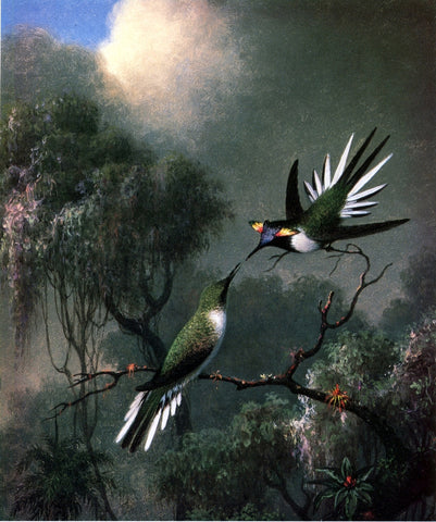 "Martin Johnson Heade Two Hummingbirds (""Sun Gems"", Heliactin Cormuta) - Hand Painted Oil Painting"