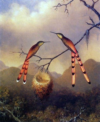 Martin Johnson Heade Two Hummingbirds with Their Young - Hand Painted Oil Painting