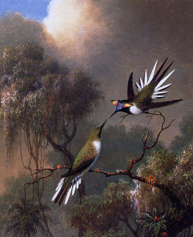 Martin Johnson Heade Two Sun Gems on a Branch - Hand Painted Oil Painting