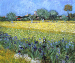 Vincent Van Gogh View of Arles with Irises - Hand Painted Oil Painting