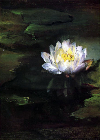John La Farge Water-Lily, Study from Nature - Hand Painted Oil Painting