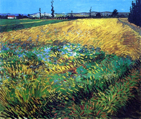 Vincent Van Gogh Wheat Field with the Alpilles Foothills in the Background - Hand Painted Oil Painting