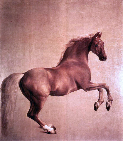 George Stubbs Whistlejacket - Hand Painted Oil Painting