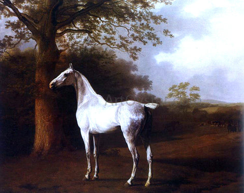 Jacques-Laurent Agasse White Horse in Pasture - Hand Painted Oil Painting