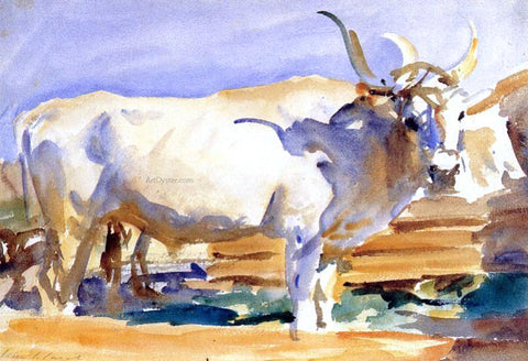 John Singer Sargent A White Ox at Siena - Hand Painted Oil Painting